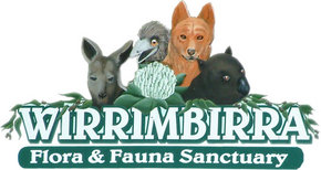 Wirrimbirra Sanctuary - New South Wales Tourism