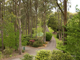 Mount Lofty Botanic Garden - New South Wales Tourism