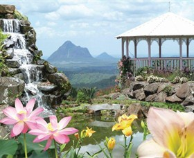 Maleny Botanic Gardens - New South Wales Tourism