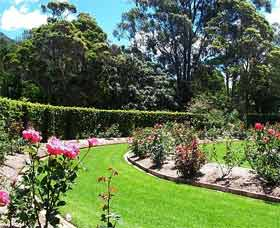 Wollongong Botanic Garden - New South Wales Tourism