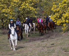 Burnelee Excursions on Horseback - New South Wales Tourism